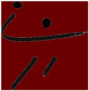Handball Aidlingen